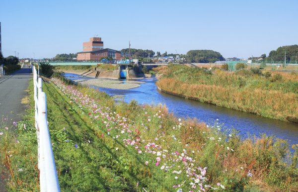 境川サイクリングロード(神奈川県)